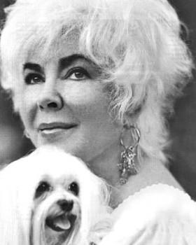 Liz Taylor con cane maltese